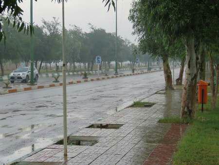 بارش ۱۶ میلیمتری باران در گتوند