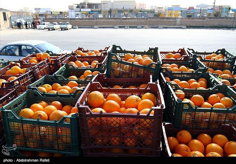 مسئول تنظیم بازار برای میوه شب عید مشخص شد