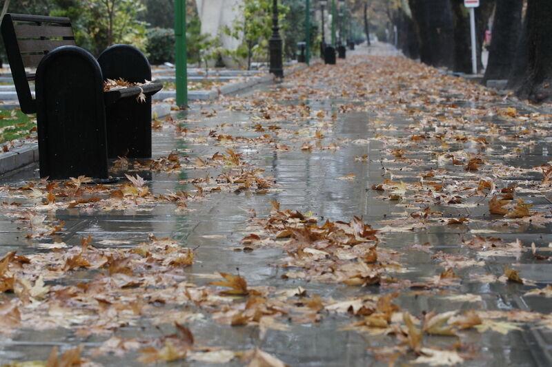 سامانه بارشی وارد خراسان جنوبی میشود