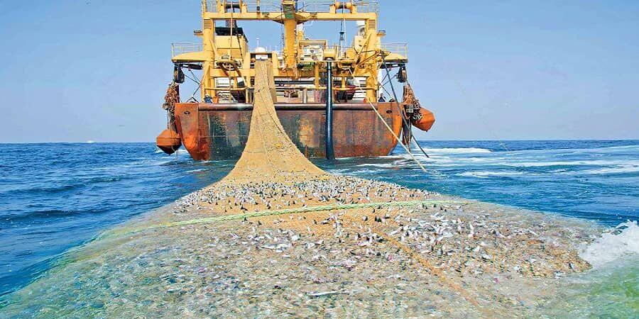 شناور غیرمجاز صید ترال در بندر جاسک توقیف شد