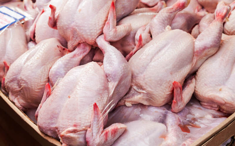 توزیع مرغ گرم در بازار با قیمت ۱۸ هزار و ۵۰۰ تومان