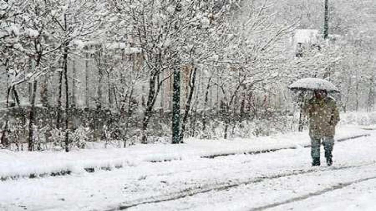 بارش ۷ سانتی متری برف در آوج