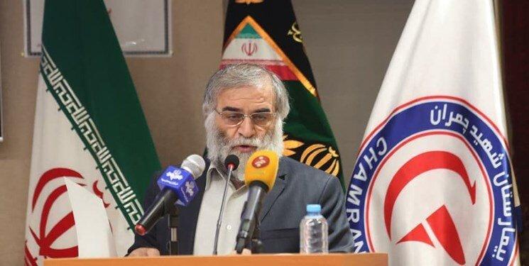 ادعای دیدار مقامات آژانس با شهید فخریزاده تکذیب شد