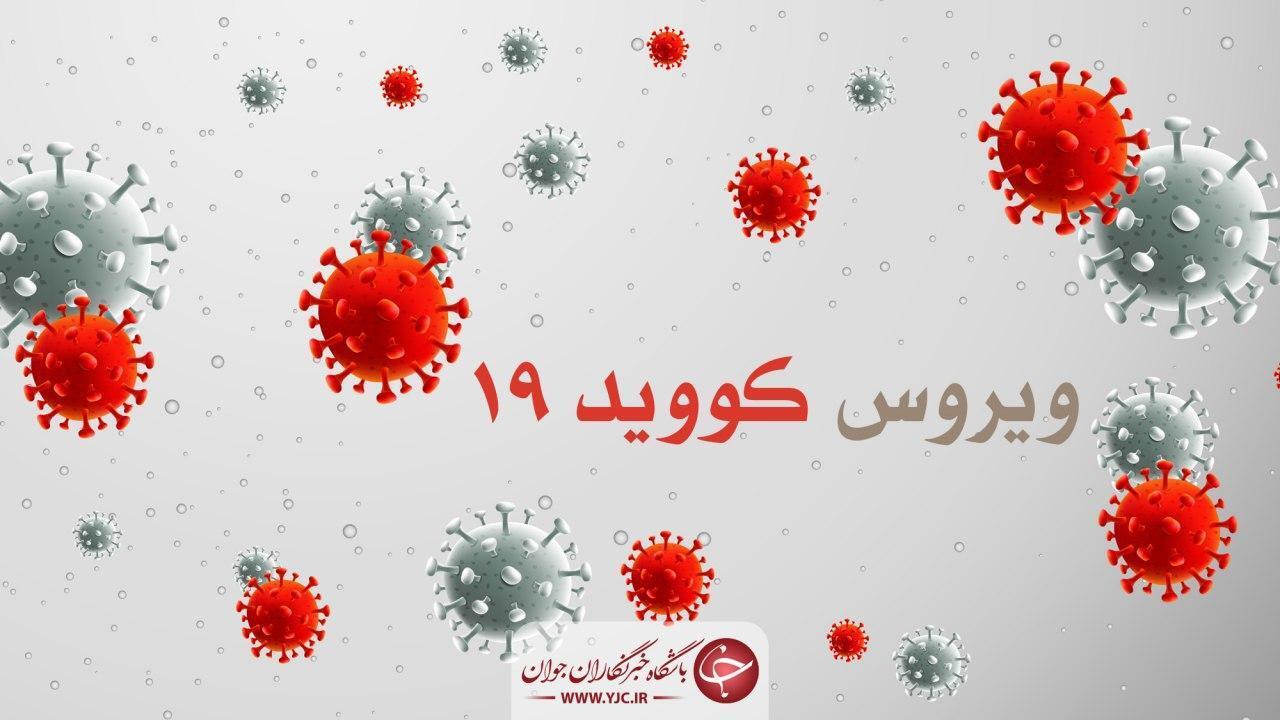 فهرست قربانیان کرونا در بوشهر ۸۱۱ نفری شد