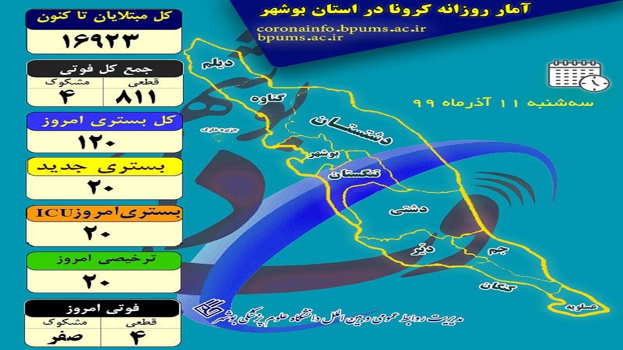 اینفوگرافی شمار مبتلایان کرونا در بوشهر