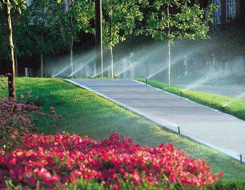 استفاده از پساب برای آبیاری فضای سبز بیرجند