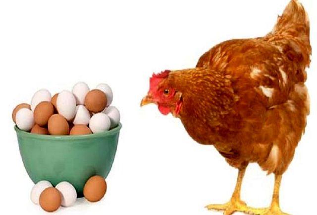 این بار نوبت تخم مرغ شد؛ هر شانه به ۴۰ هزارتومان رسید