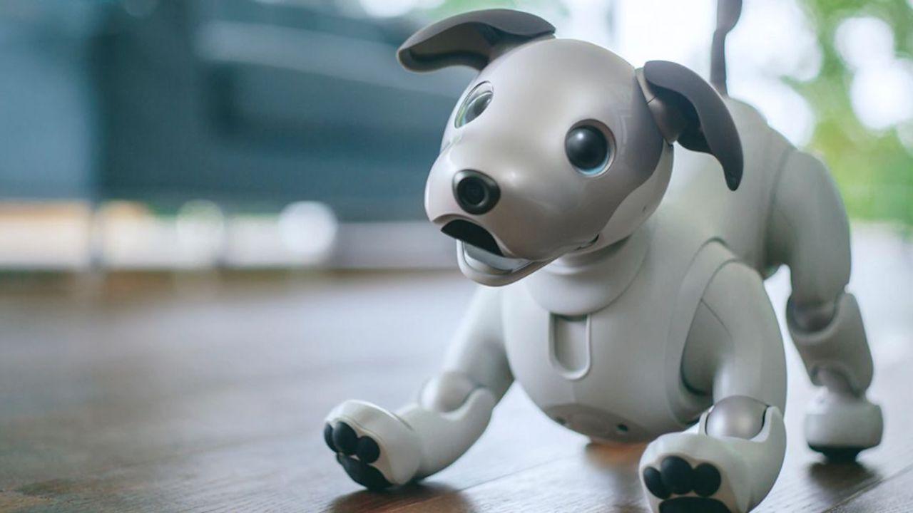 رباتها جایگزین سگهای درمانگر میشوند