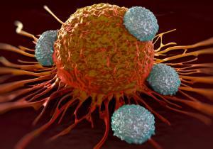 کمک به سیستم ایمنی بدن برای از بین بردن سرطان