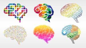 ذهن شما چگونه کار میکند؟