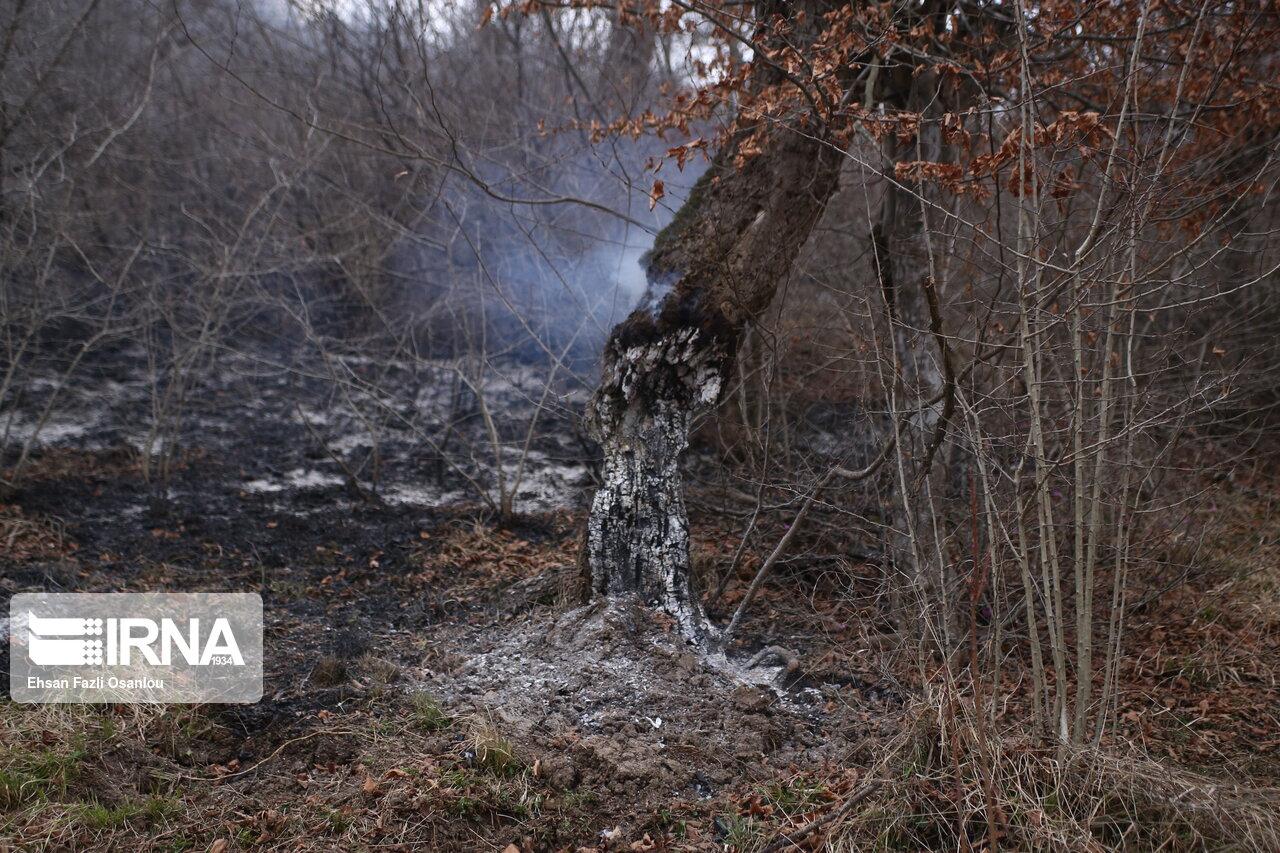 عکس/ آتش سوزی جنگل شهرستان نکا در مازندران