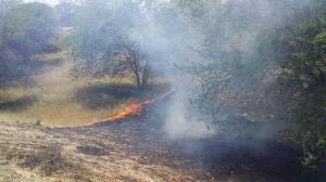 ۳۵ هکتار از جنگلهای هیرکانی سوخت