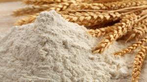 طرح نظارت بر چرخه تولید گندم، آرد و نان در اردبیل اجرا میشود