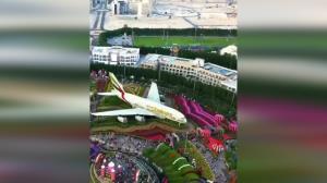 باغ گل «میراکل گاردن»، یکی از عجایب دبی