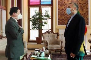 تاکید امیرعبداللهیان و سفیر چین بر مقابله با تحریمهای تروریسم اقتصادی