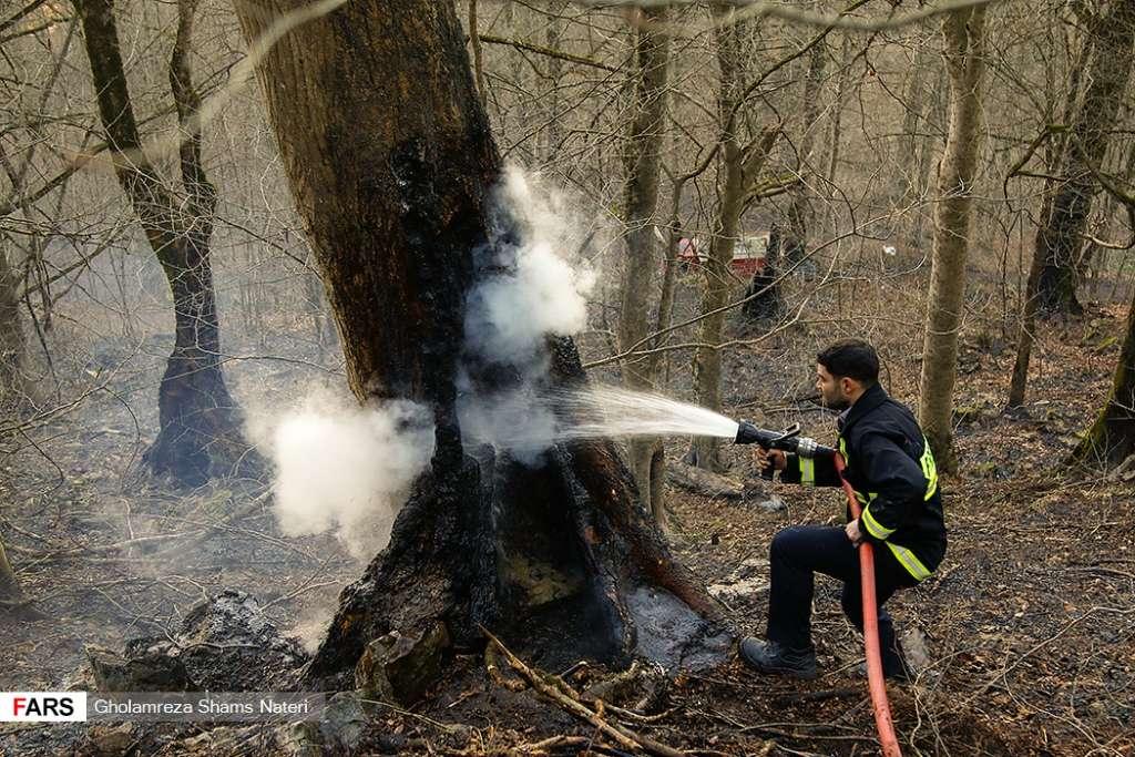 عکس/ مهار آتش سوزی در جنگل های رامسر