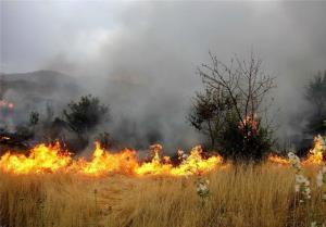 آتشسوزی بیش از ۳ هکتار از مراتع روستایی در همدان