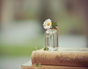 شاعرانه/چیدن این گل گناه است و نچیدن مشکل است