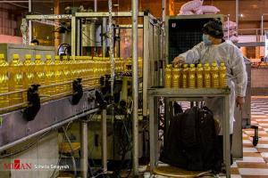 واردات ۴۰۰ هزار تُن روغن تا پایان سال