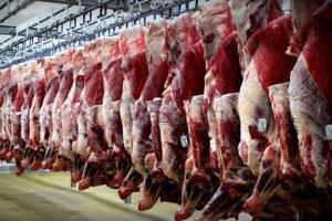 اختلاف کاذب ۴۰ درصدی گوشت از دامداری تا مغازه