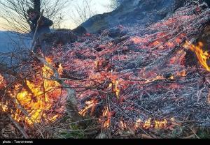 تداوم آتشسوزی در جنگلهای مرزی جمهوری آذربایجان و گیلان