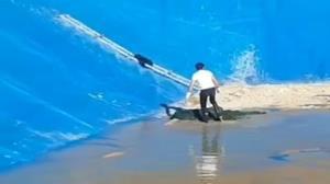 نجات یک قلاده روباه گرفتار در استخر آب کشاورزی سمیرم