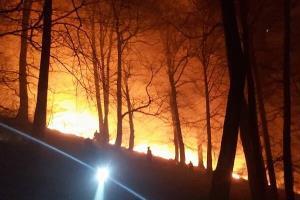 آتش در پارک ملی گلستان شعله کشید