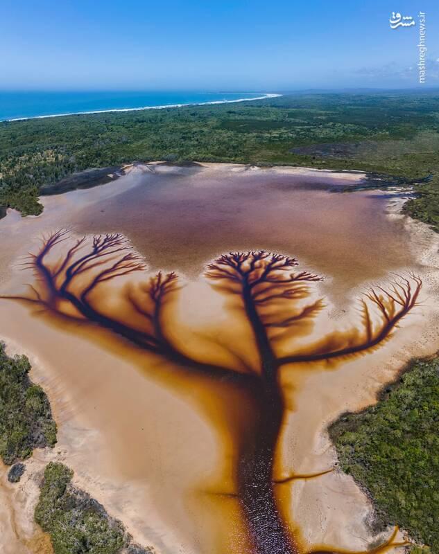 تصاویر هوایی جالب از رودخانه ای در استرالیا