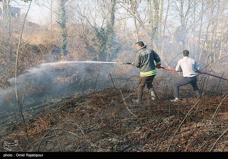 عکس/ مهار آتش سوزی باغات گیلان