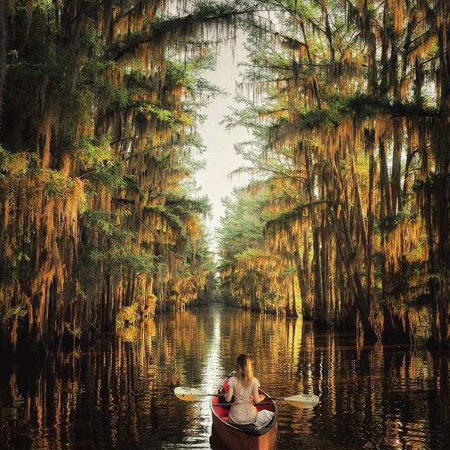 تصویری کارت پستالی از طبیعت تگزاس