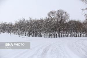 بارش برف در ۱۳ استان؛ کوه نوردی نکنید