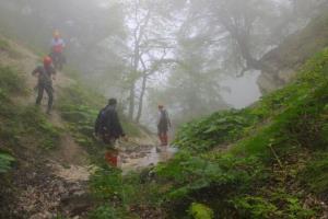 انجام آزمایش DNA روی جسد کشف شده در جنگل کردکوی