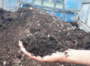 توقیف محموله خاک برگ غیرمجاز جنگلی در شیراز