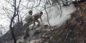 آتش در« پارک ملی گلستان» مهار شد