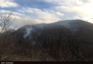 آتش در پارک ملی گلستان کاملا خاموش شد