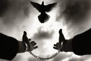 محکوم به قصاص در همدان بخشیده شد