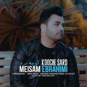 آهنگ جدید/ «کوچه سرد» آهنگ زمستانی میثم ابراهیمی منتشر شد