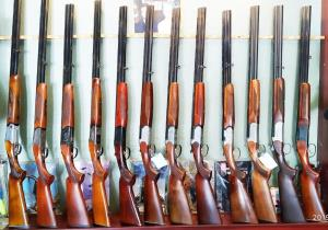 شناسایی ۲ هزار سلاح شکاری غیر مجاز در پایتخت