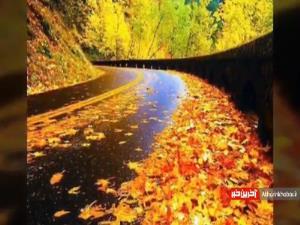 نماهنگ زیبا و آرامش بخش «پاییز» با صدای امین بانی