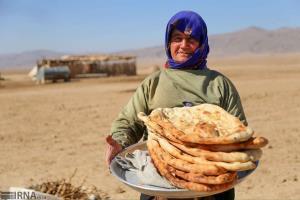 تنها ۵۰ درصد عشایر خراسان شمالی سهمیه آرد خانهپزی دریافت میکنند