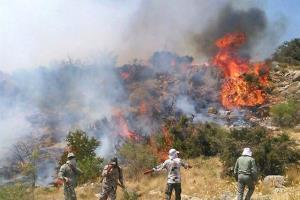 ۱۰ نقطه از جنگل های مازندران زیر تیغ آتش