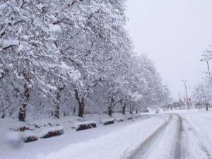 بارش برف و باران؛ دما 10 تا 20 درجه کاهش می یابد