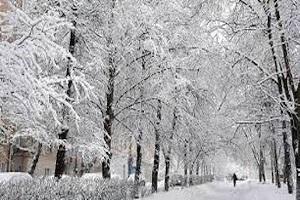 ۳ روز پر برف و باران و سرما در راه است