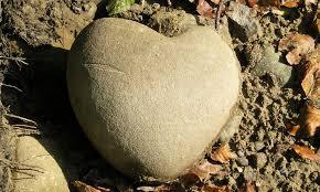 حکمت/ یکی از عوامل قساوت قلب چیست؟