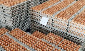 جبران بخشی از کمبود تخم مرغ در خراسان جنوبی