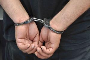دستگیری ۲۴ سارق حرفهای در ایلام