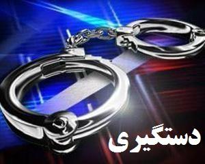 دستگیری سارق مزارع و باغات در ابهر