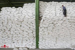 الزام بانک مرکزی برای تامین به هنگام ارز شکر