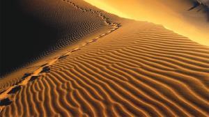 رخ دادن پدیده عجیب در صحرای الجزایر
