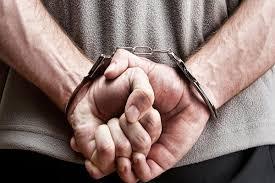دستگیری سارق ۱۰ فقره سرقت منزل در نکا